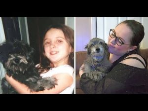 Zázrak? Žena adoptovala psa, kterého se kdysi musela vzdát!