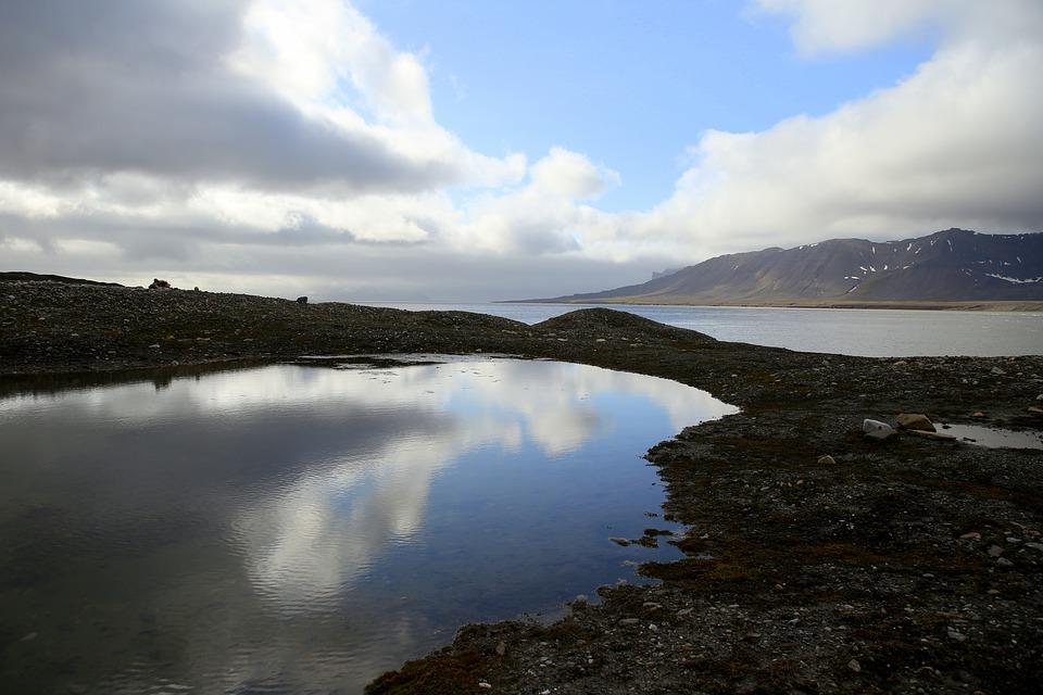 Tání permafrostu může uvolnit další patogeny.