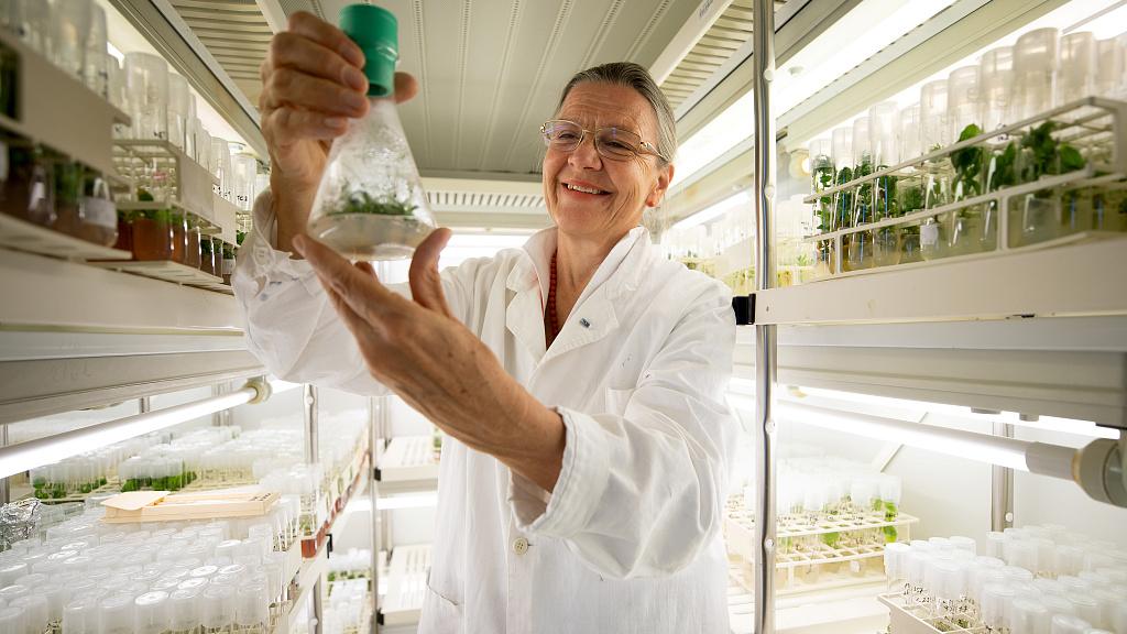 Profesorka Margit Laimer s 32000 let starou rostlinou, foto Lisi Niesner /VCG