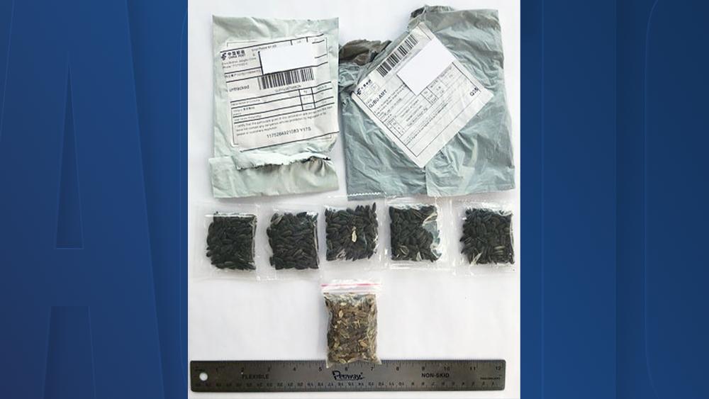 Podle čínského ministerstvo zahraničí jsou čínské adresy zfalšované, foto abcactionnews.com