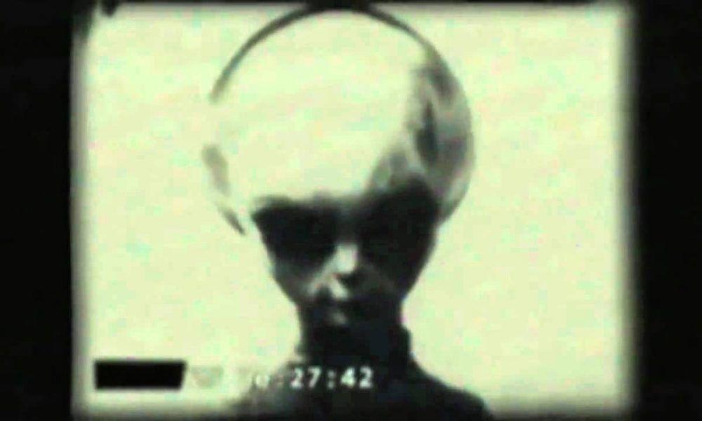 Údajná podoba přeživší mimozemské bytosti. ZDROJ: Wikimedia Commons