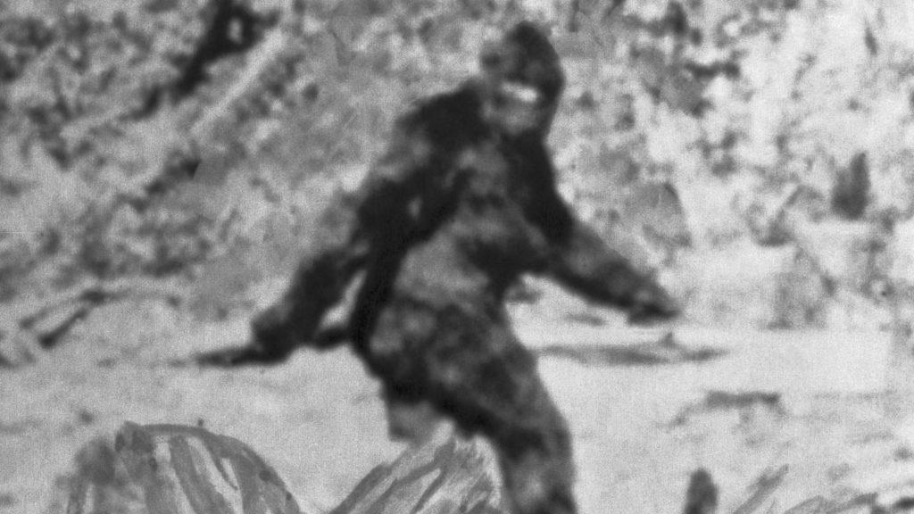 Projel prý kolem tvora, který připomínal Bigfoota. Když se na místo vrátil, bylo zvíře pryč