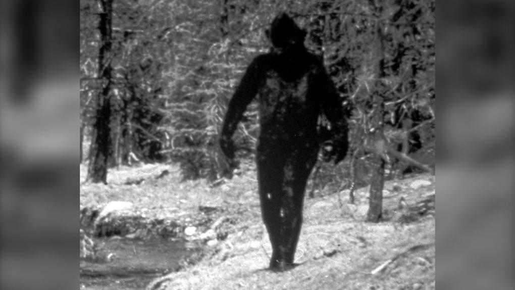 Setkal se muž skutečně s tajemným tvorem? ZDROJ: Wikimedia commons