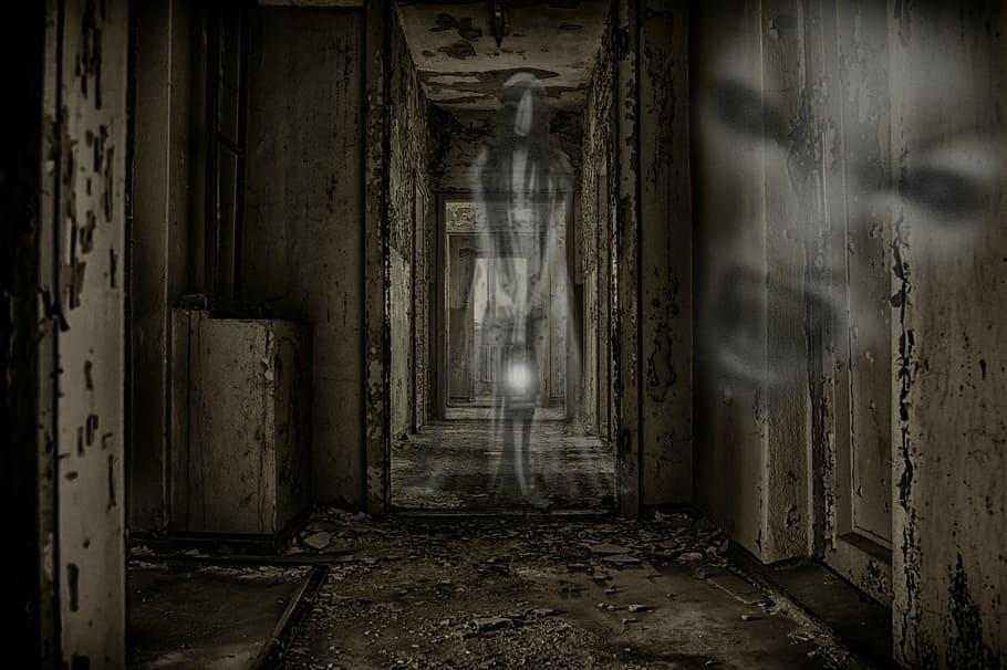 Patříte i vy mezi ty, kteří již viděli ducha?