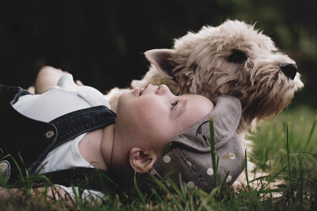 Oba měli psa, kterého pojmenovali Toy, foto Pixabay