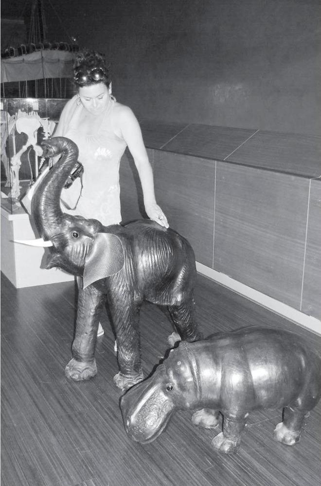 Návštěvnici muzea vkyperské Nikósii zaujala rekonstrukce podoby trpasličího slona a pygmejského hrocha.