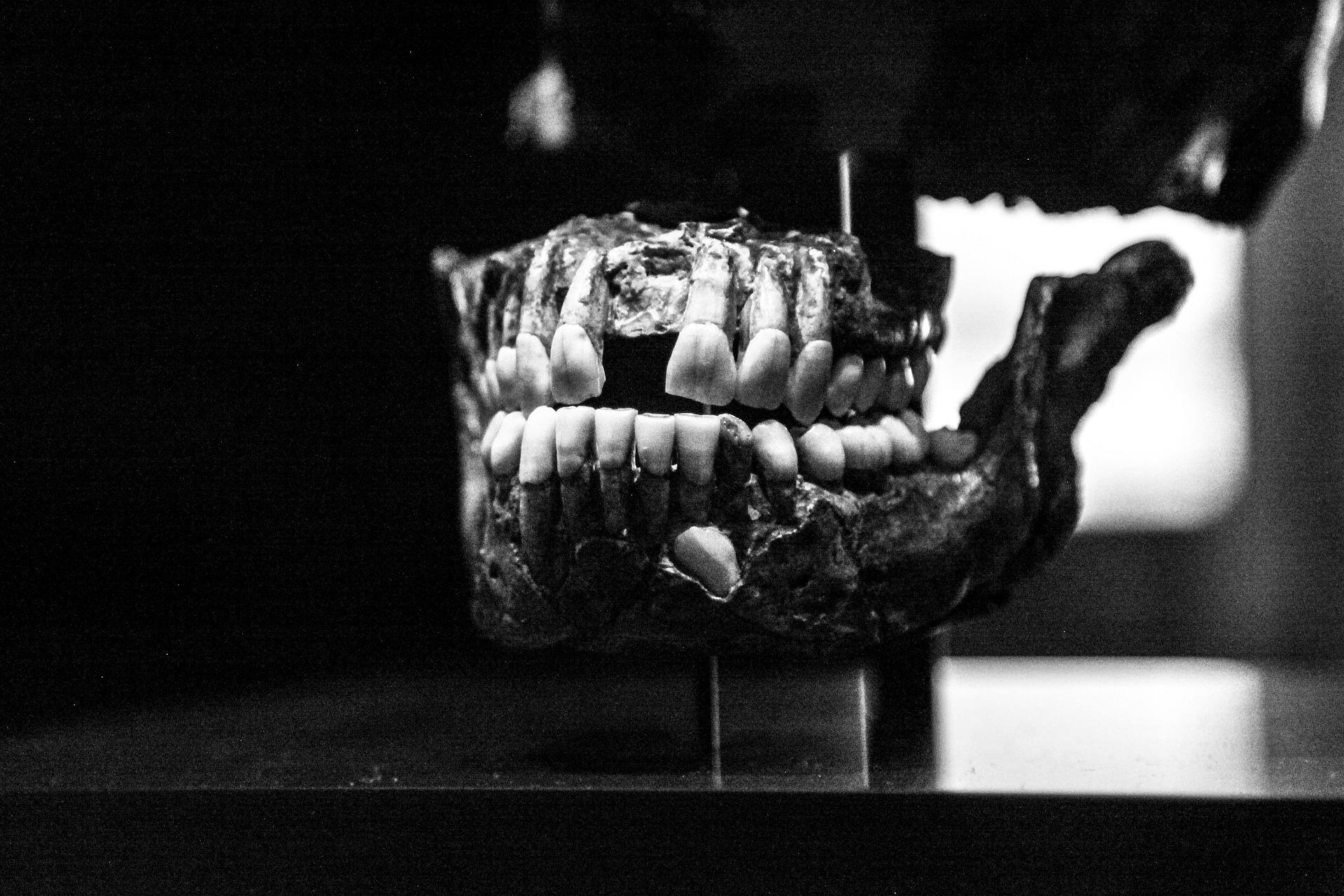 Zubařství před 9000 lety: Starověké národy excelovaly ve stomatologii