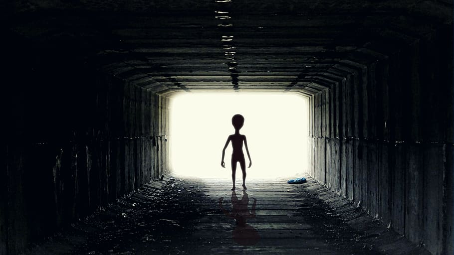 Co jsme poslali mimozemšťanům?