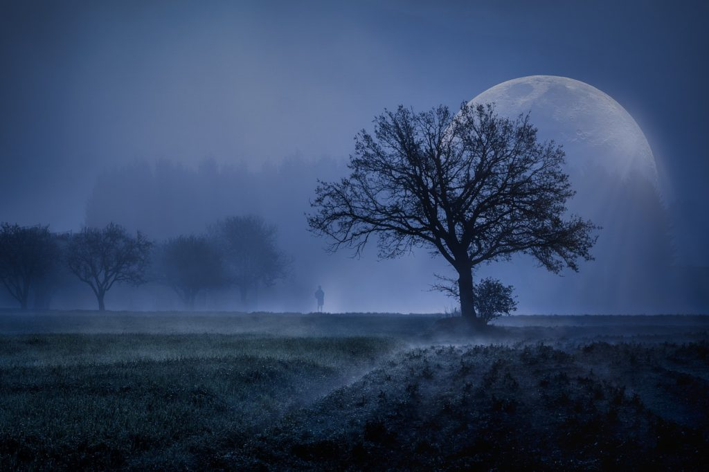 Podle starších představ na to,  aby se z vás stal vlkodlak, stačí přespat v noci za úplňku venku.  FOTO: Pixabay