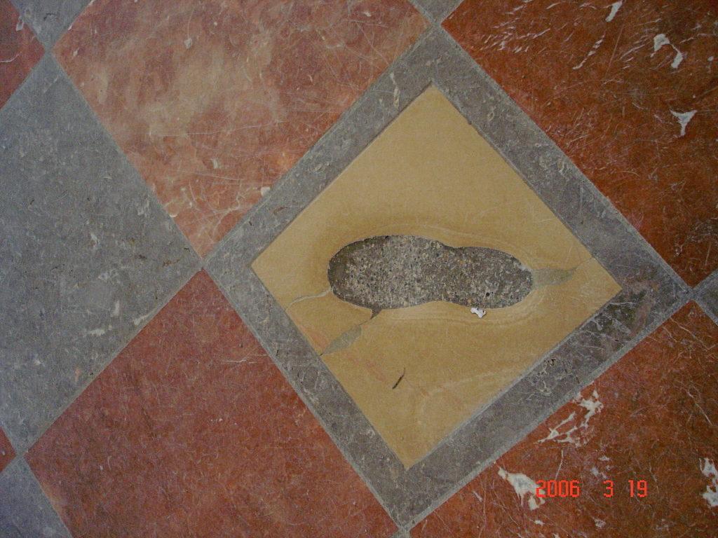 Ďáblova stopa má dokonce čertovský ocásek. Foto:  Aleister Crowley / Wikimedia commons - volné dílo