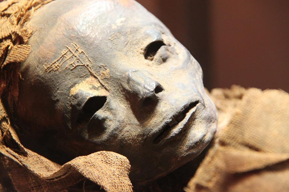 Novináři mohli také nahlédnout přímo do jednoho ze sarkofágů, který byl během konference před jejich zraky otevřen. Foto: ESD-SS / pixabay