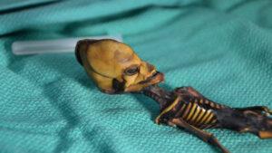 Záhada z Atacamy: Byla v poušti nalezena mumie mimozemšťana?