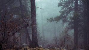 Záhada jmen vyřezaných do skal v kanadských horách stále neobjasněna!